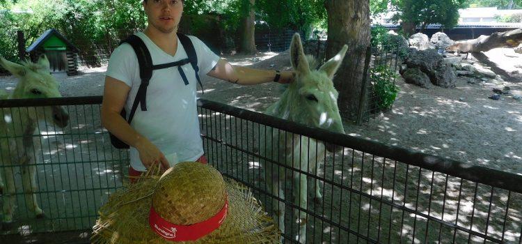 Ausflug in den Zoo in Ulm